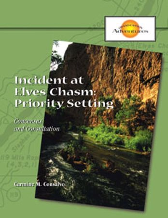 Picture of Incident at Elves Chasm: Priority Setting