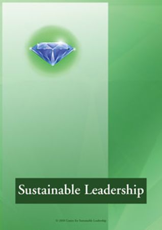 Picture of Sustainable Leadership Questionnaire