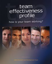 Picture of Team Effectiveness Profile