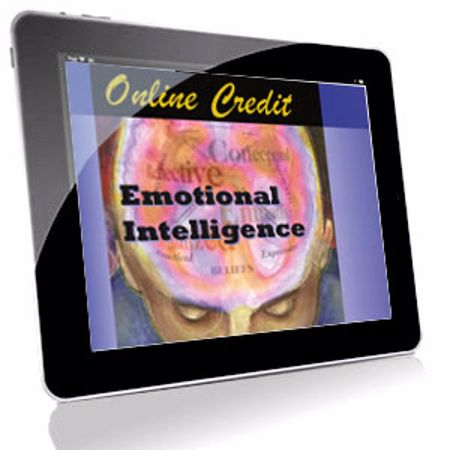Picture of Emotional Intelligence Style Profile - Online Credit