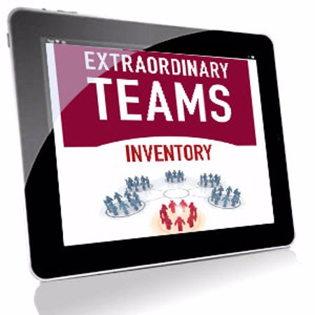 Picture of Extraordinary Teams Inventory - Online Team Assessment Credit