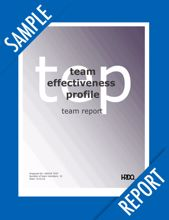 Picture of Team Effectiveness Profile - TEAM Online Sample Report