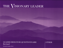 Picture of The Visionary Leader-Other Questionnaire