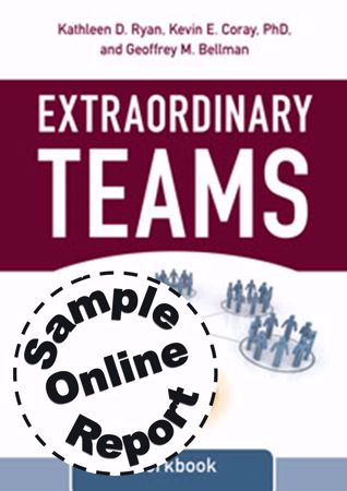 Picture of Extraordinary Teams - Online Team Assessment Sample Report