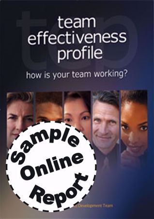 Picture of Team Effectiveness Profile - SELF Online Sample Report
