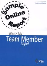 Picture of What's My Team Member Style? - Online Sample Report
