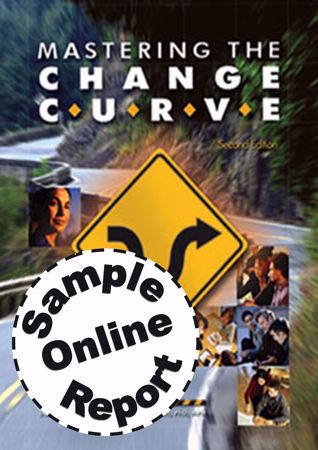 Picture of Mastering The Change Curve - Online Sample Report